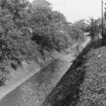 緑川 1955(昭和30)年代(写真:くにたち郷土文化館蔵)